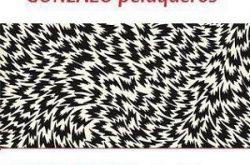 1464258400_Gonzalo_Peluqueros_Logo-250x165 Gonzalo Peluqueros
