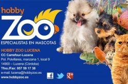 1467652708_Hobby_Zoo_Lucena_logo-250x165 Hobby Zoo Lucena