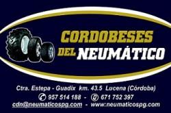 1483005862_Cordobeses_del_Neumatico_logo-250x165 Cordobeses del Neumático
